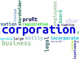 רישום חברות, ניסוח תקנון והסכמי מייסדים, הצהרות דירקטורים ראשונים וכד'